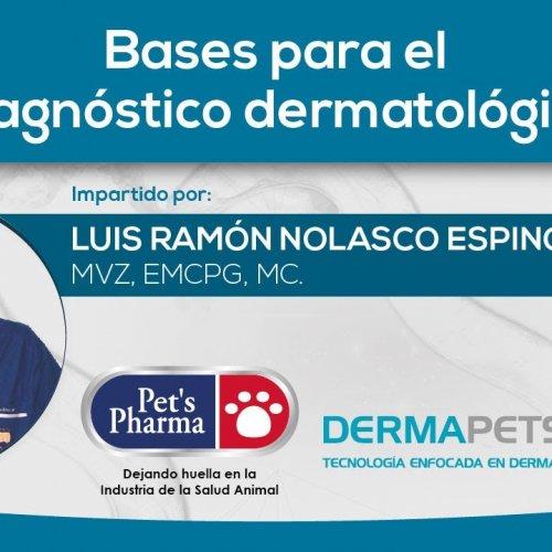 Bases para el diagnóstico dermatológico