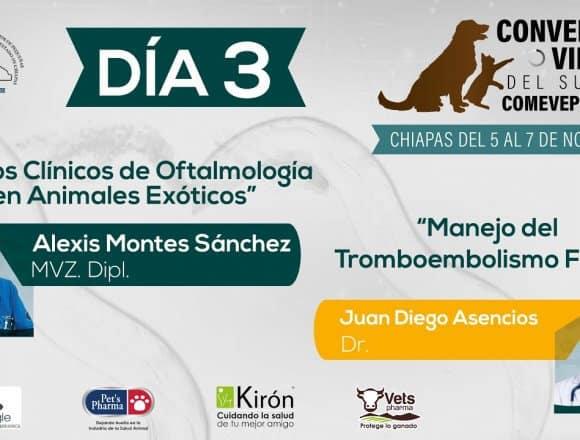 Convención Virtual COMEVEPECH 3er Día