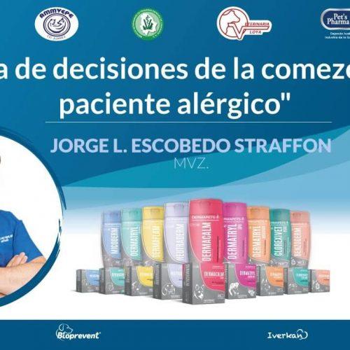 Toma de decisiones de la comezón del paciente alérgico