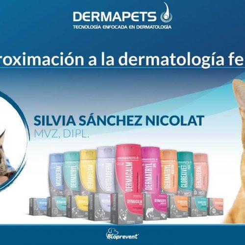 Aproximación a la dermatología felina