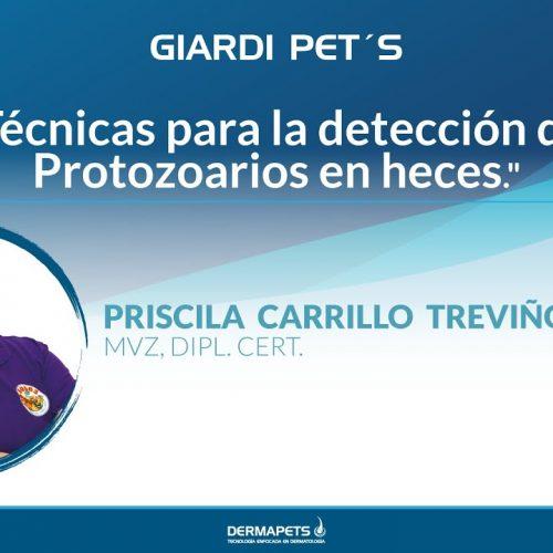 Técnicas para la detección de Protozoarios en heces