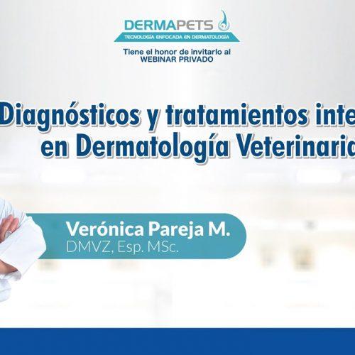 Diagnósticos y tratamientos integrales en Dermatología Veterinaria