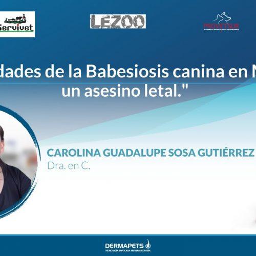 Actualidades de la Babesiosis canina en México: un asesino letal.