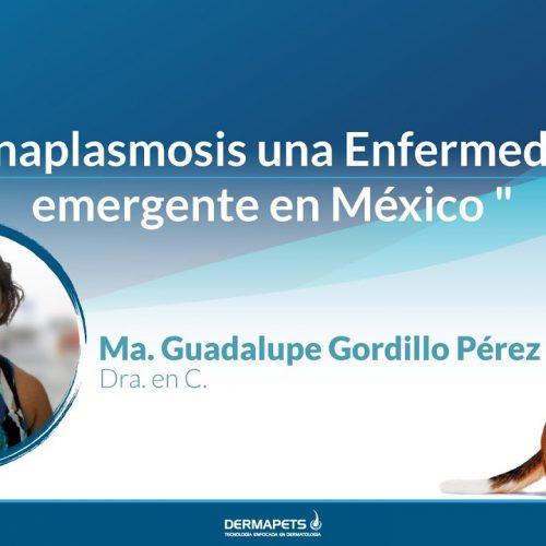 Anaplasmosis una Enfermedad emergente en México
